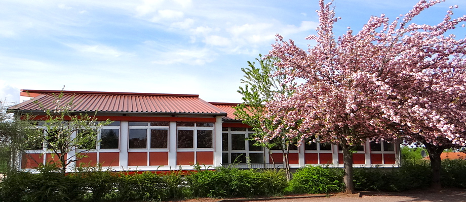 KUNZ Institut in Ihrer Nähe